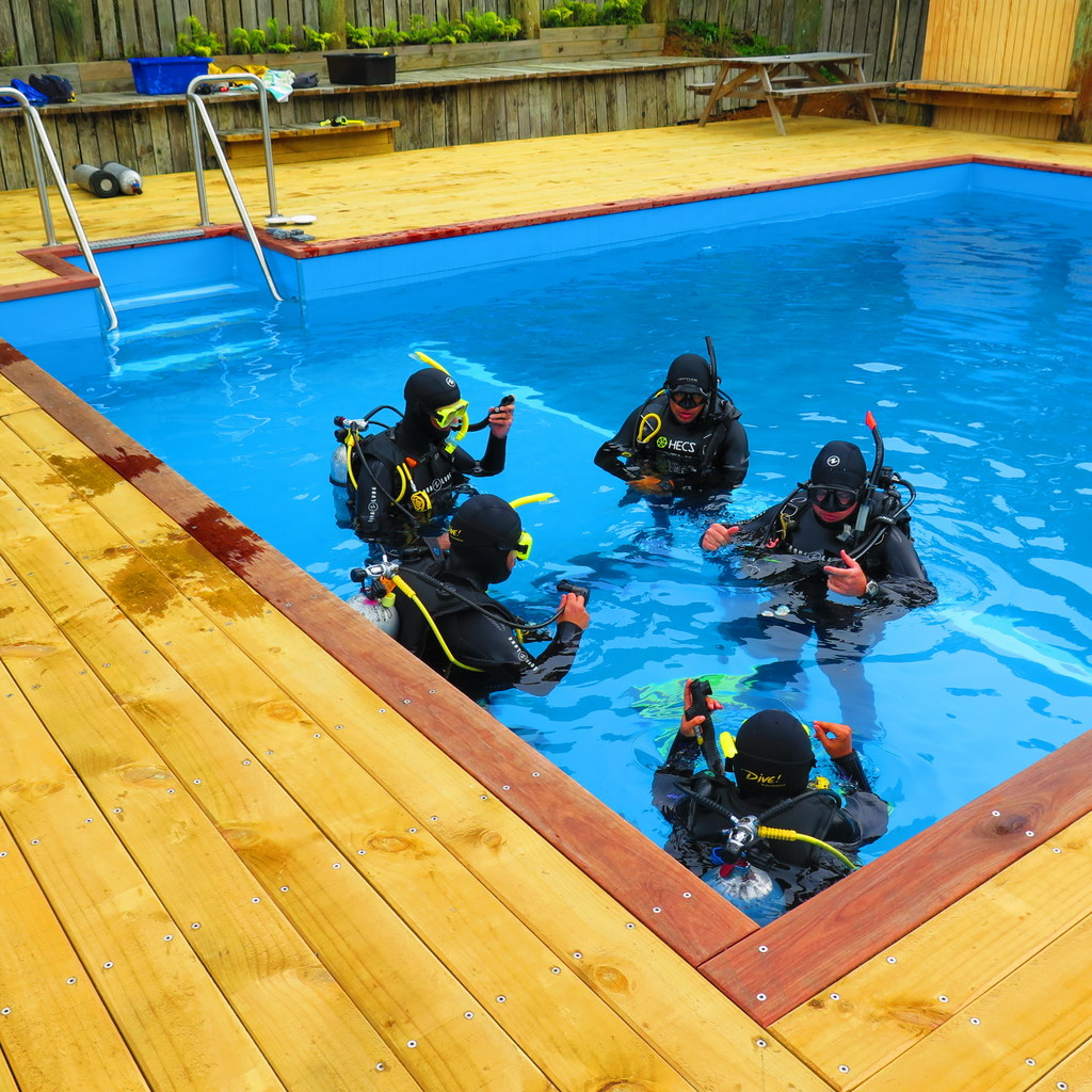 Training at Shed 7 in the salt-water pool