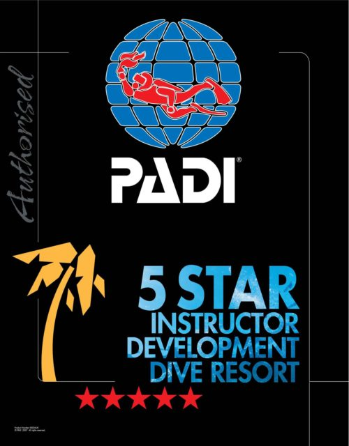 Learn to Dive! - PADI Dive Training, Dive Courses New Zealand - Dive ...